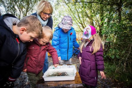2122405 w pond dipping